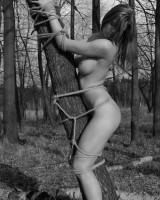 blonde bondage en foret sur arbre